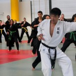 stge hapkido 10 oct15 web10