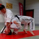 stge hapkido 10 oct15 web4