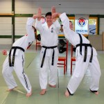 stge hapkido 10 oct15 web7