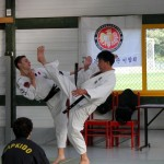 stge hapkido 10 oct15 web9