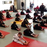 stage hapkido 12dec15 web1