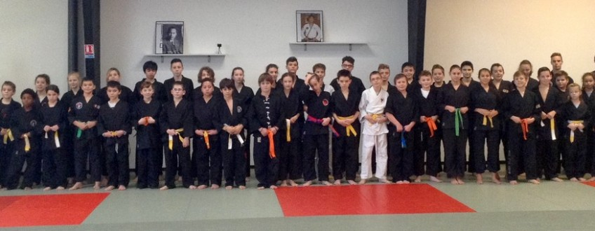 stage hapkido 12dec15 web3